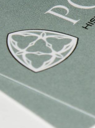 Pointer: new logo design detail
